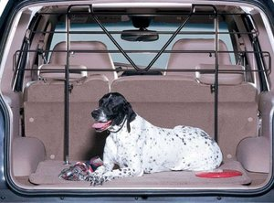 car dog barrier