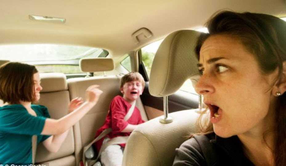 pelea de niños dentro del automovil 2